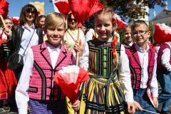 0117-pochod-polonia-polacy-fot.M.Paszkowska