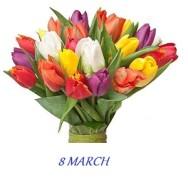 tulipany_EN